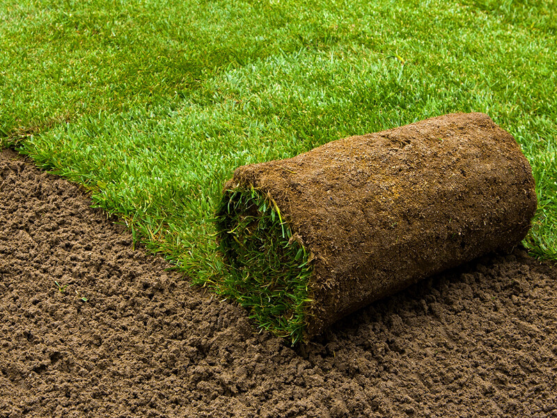 roll of astro turf