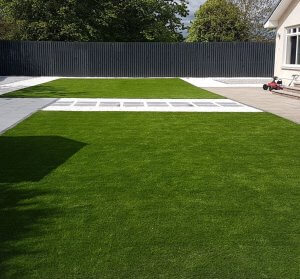green grass outside house
