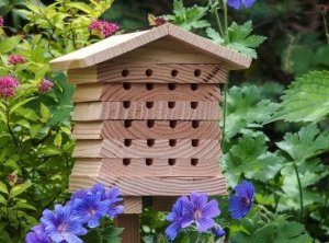 Insect hotel wooden planks