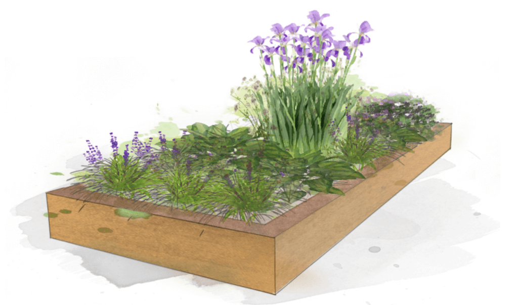 Example planting View 1 Modern, Classic, Shade, Clay